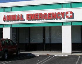 Animal Emergency Care Center - Agoura Hills Animal Hospital
